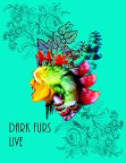 Dark Furs - Concert Review